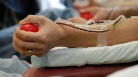 Какие льготы положены донорам крови в России в 2017 году