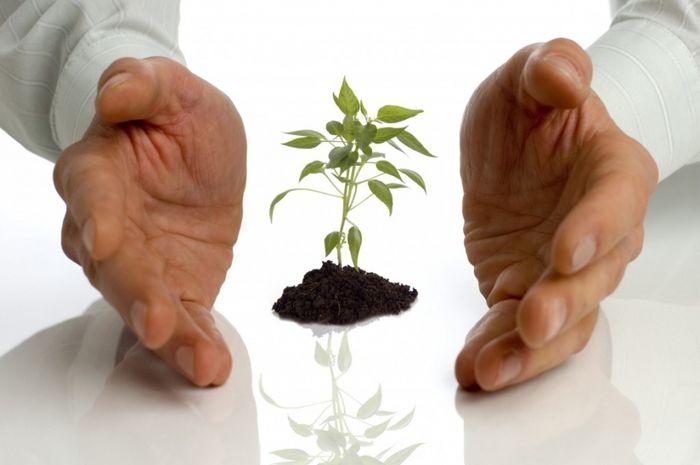 Порядок оформления государственной помощи на развитие малого бизнеса