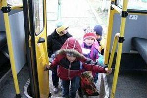 Льготный проезд для школьников на общественном транспорте в 2017 году: правила и порядок предоставления