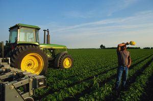 Бизнес-план для получения гранта 1500000 руб для сельского хозяйства: образец, правила и особенности составления