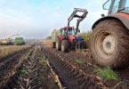 Гранты на развитие сельского хозяйства в России