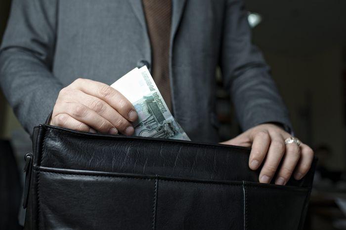 Справка о доходах и расходах государственного служащего в 2017 году: бланк и правила заполнения
