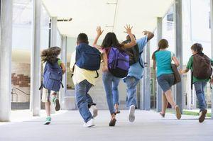 Стоимость проезда по социальной карте учащегося
