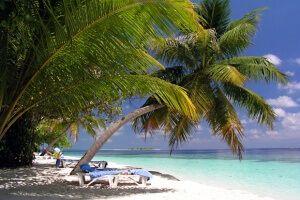 Образцы заявления на разные виды отпусков (ежегодный, учебный, декретный и др)