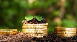 Размер льгот на земельный налог для пенсионеров в Московской области