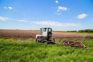 Как получить дальневосточный гектар – закон о предоставлении земли в Дальневосточном федеральном округе