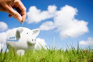 Механизм страхования вкладов физических лиц