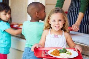 Правила оформления бесплатного питания в школе