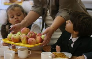 От чего зависит вид бесплатного питания в школе
