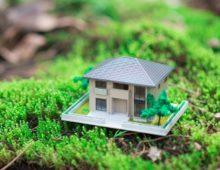 Правила оплаты земельного налога для юридических лиц