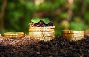 Земельный налог для юридических лиц в 2017 году: правила расчета, сроки и порядок оплаты