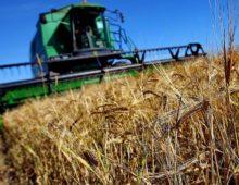 Программы субсидирования сельского хозяйства