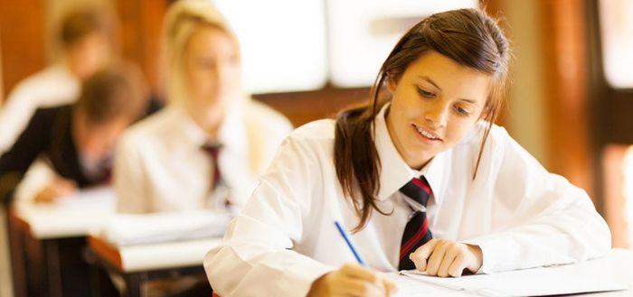 Закон об образовании в РФ для школ, техникумов и ВУЗов