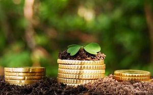 Правила оформления льгот по земельному налогу