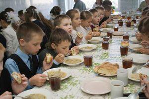 Кому положено льготное двухразовое питание в школе