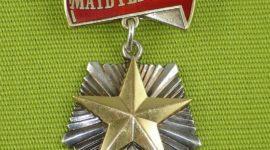Награда Мать-героиня и орден Родительская слава