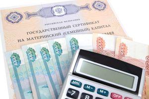 Предложения о замене материнского капитала ежемесячными выплатами