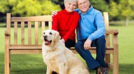 Правила перевода накопительной части пенсии в НПФ