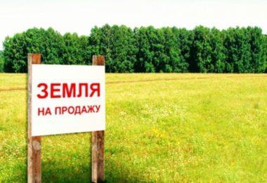 Детская карта при рождении ребенка в 2017 году в СПб: условия получения, список магазинов, правила использования